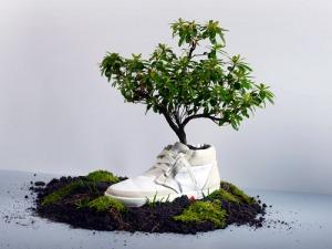 vente-chaussures-écologiques